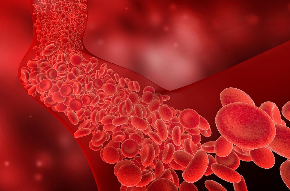 Czym kierować się kupując preparaty na wzmocnienie naczyń krwionośnych?